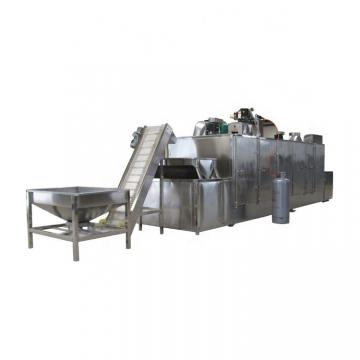 Hot Sale Industrial Mesh Belt Dryer for Fruit and Vegetable