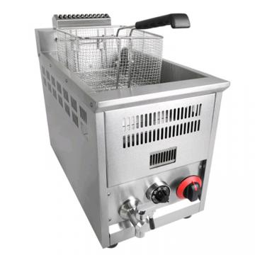 Manufacture Commercial Big Capacity High Quality Electric Deep Fryer with Good Price