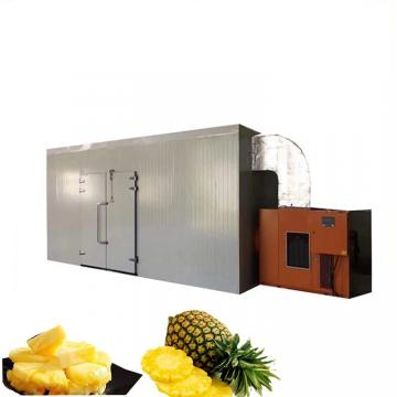Factory Price Industrial All Temperature Heat Pump Meat Fruit and Vegetable Dehydrator
