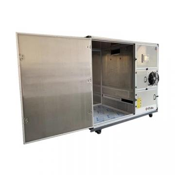 Commercial Belt Air Vegetable Food After Washing Dryer
