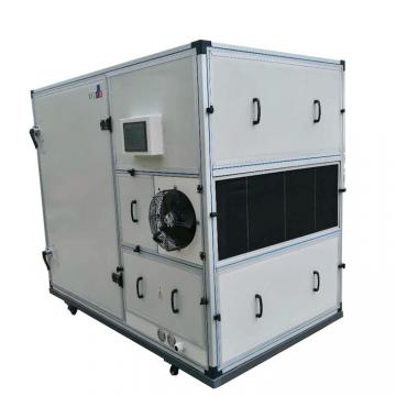 High Quality Commercial Fruit and Vegetable Dryer